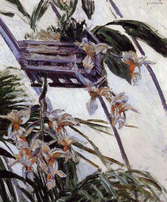 famous painting Orchids of Gustave Caillebotte
