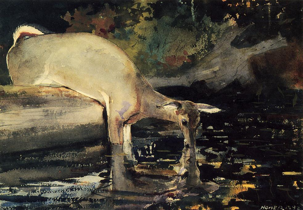 Order Paintings Reproductions Impressionism | Deer Drinking by Winslow Homer | TopImpressionists.com