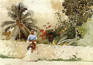 Winslow Homer - On the Way to Market, Bahamas