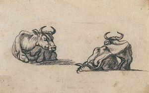 Aelbert Jacobsz Cuyp - Study, Two Cows 1
