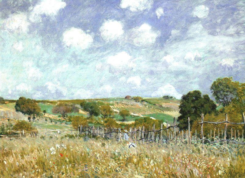 famous painting Meadow of Alfred Sisley