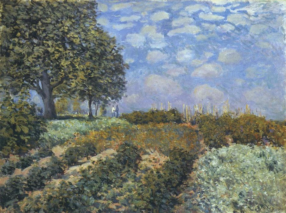 famous painting The Fields of Alfred Sisley