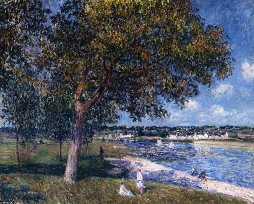 famous painting Walnut Tree in a Thomery Field of Alfred Sisley