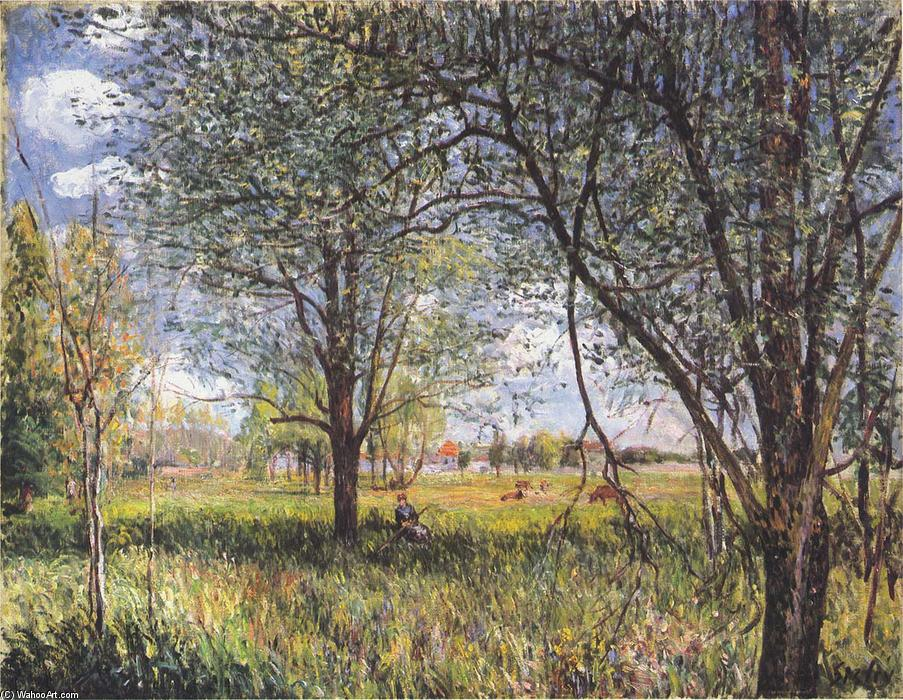 famous painting Willows in a field afternoon of Alfred Sisley