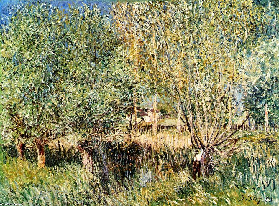 famous painting Willows on the Banks of the Orvanne of Alfred Sisley