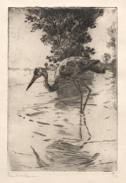 famous painting Blue Heron of Frank Weston Benson