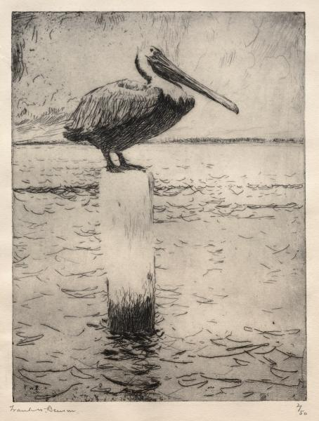 famous painting Brown Pelican of Frank Weston Benson