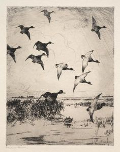 Frank Weston Benson - Flying Ducks