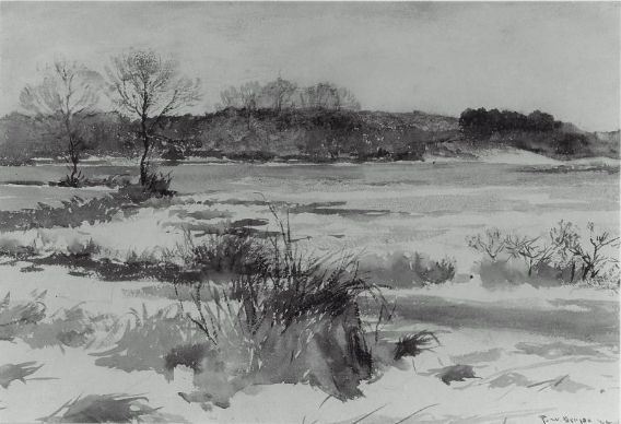 famous painting Meadows in winter of Frank Weston Benson