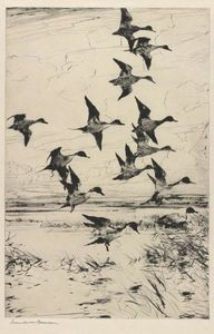 Frank Weston Benson - Pintails Passing