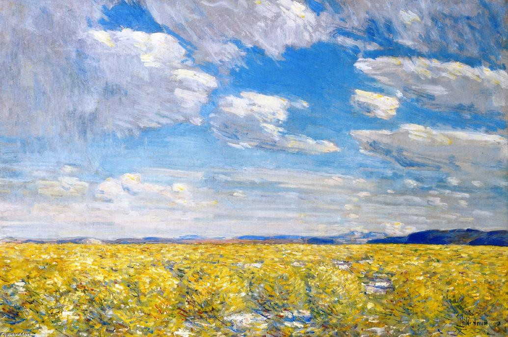 famous painting Afternoon Sky, Harney Desert of Frederick Childe Hassam