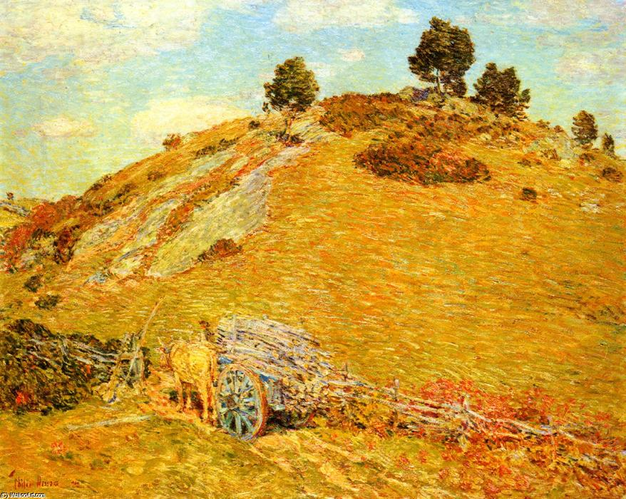 famous painting Bornero Hill, Old Lyme, Connecticut of Frederick Childe Hassam
