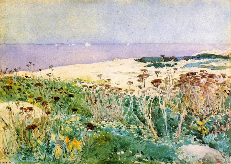 famous painting Isles of Shoals 1 of Frederick Childe Hassam