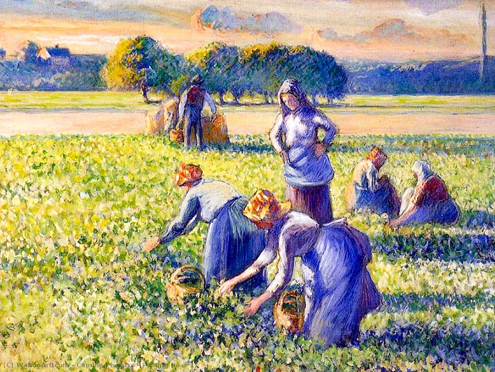 famous painting Picking Peas 1 of Camille Pissarro
