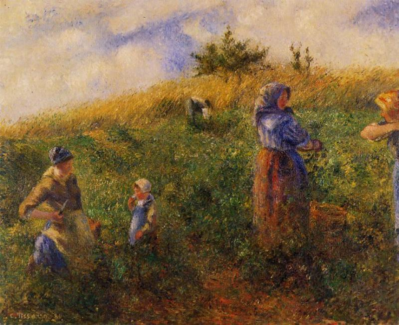 famous painting Picking Peas of Camille Pissarro