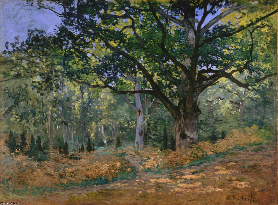 famous painting The Bodmer Oak, Fontainebleau of Claude Monet