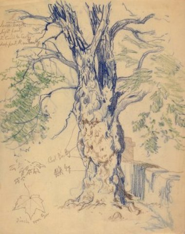 famous painting Study of a Tree of Edward Henry Potthast
