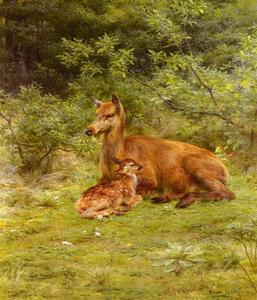 Rosa Bonheur - Doe And Fawn In A Thicket