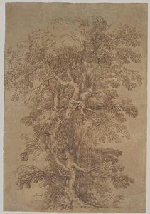 Salvator Rosa - A Large Tree