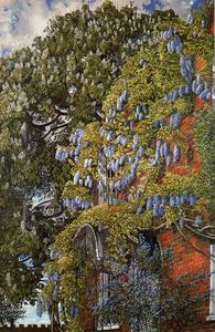 Stanley Spencer - Wisteria at Englefield