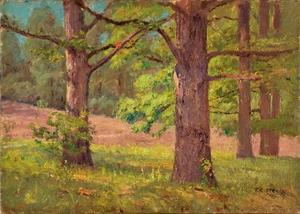 Theodore Clement Steele - Between the Oak Trees (The Big Oaks)
