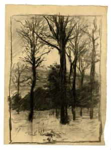 Theodore Clement Steele - Trees in winter