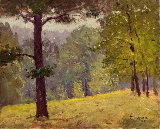 famous painting Untitled (Heavily Wooded Slope) of Theodore Clement Steele