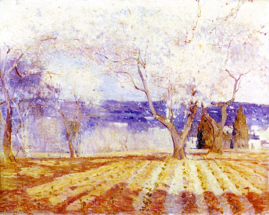 famous painting Fruit Trees in Blossom, Algiers of Charles Edward Conder