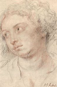 Peter Paul Rubens - Head of woman