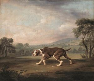 George Stubbs - Spanish Pointer