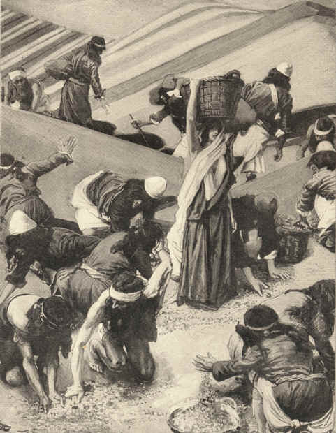 famous painting The Gathering of the Manna of James Jacques Joseph Tissot