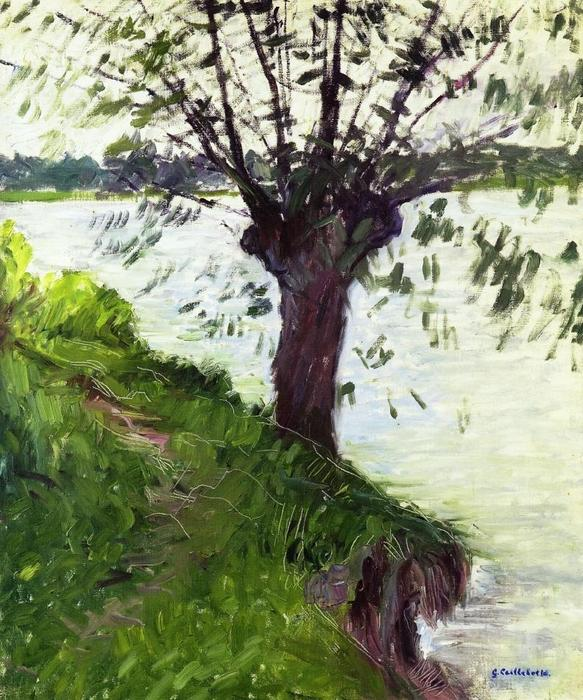 famous painting Willow on the Banks of the Seine of Gustave Caillebotte