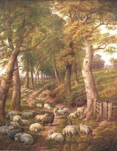 Charles Jones - Landscape With Sheep