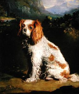 George Philip Reinagle - A King Charles Spaniel