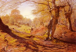 Andrew Maccallum - Seasons_In_The_Wood Spring