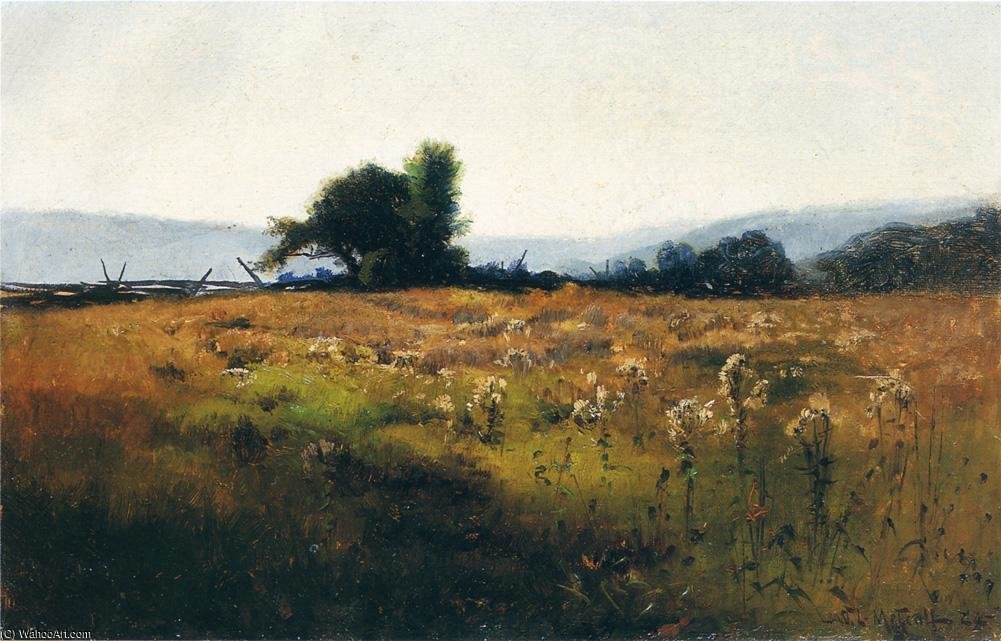 famous painting Mountain View from High Field of Willard Leroy Metcalf
