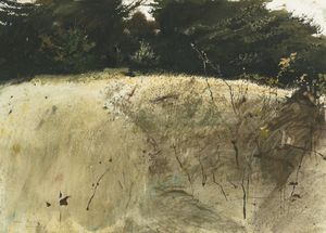 Andrew Wyeth - Fall grasses