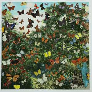 Peter Blake - Appearance of the Butterfly Man