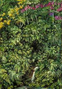 Marianne North - Glimpse in a Glen at Gongo, Brazil