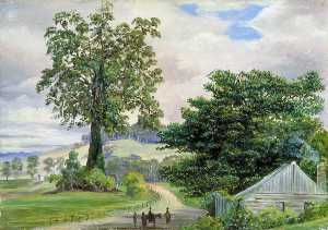 Marianne North - Fig Tree Village and Its Big Godfather, Illawarra
