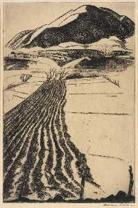 Howard Cook - Talpa Furrows