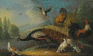 Marmaduke Cradock - a still life with a peacock, pigeons and chickens in a river landscape