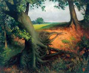 Stanley Vickerman - Tree Roots